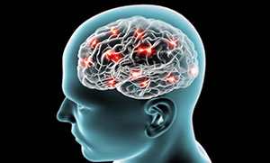 Brain performance Link - Photo of brain with lights